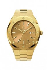 Men's Paul Rich gold watch with steel strap Midas Touch